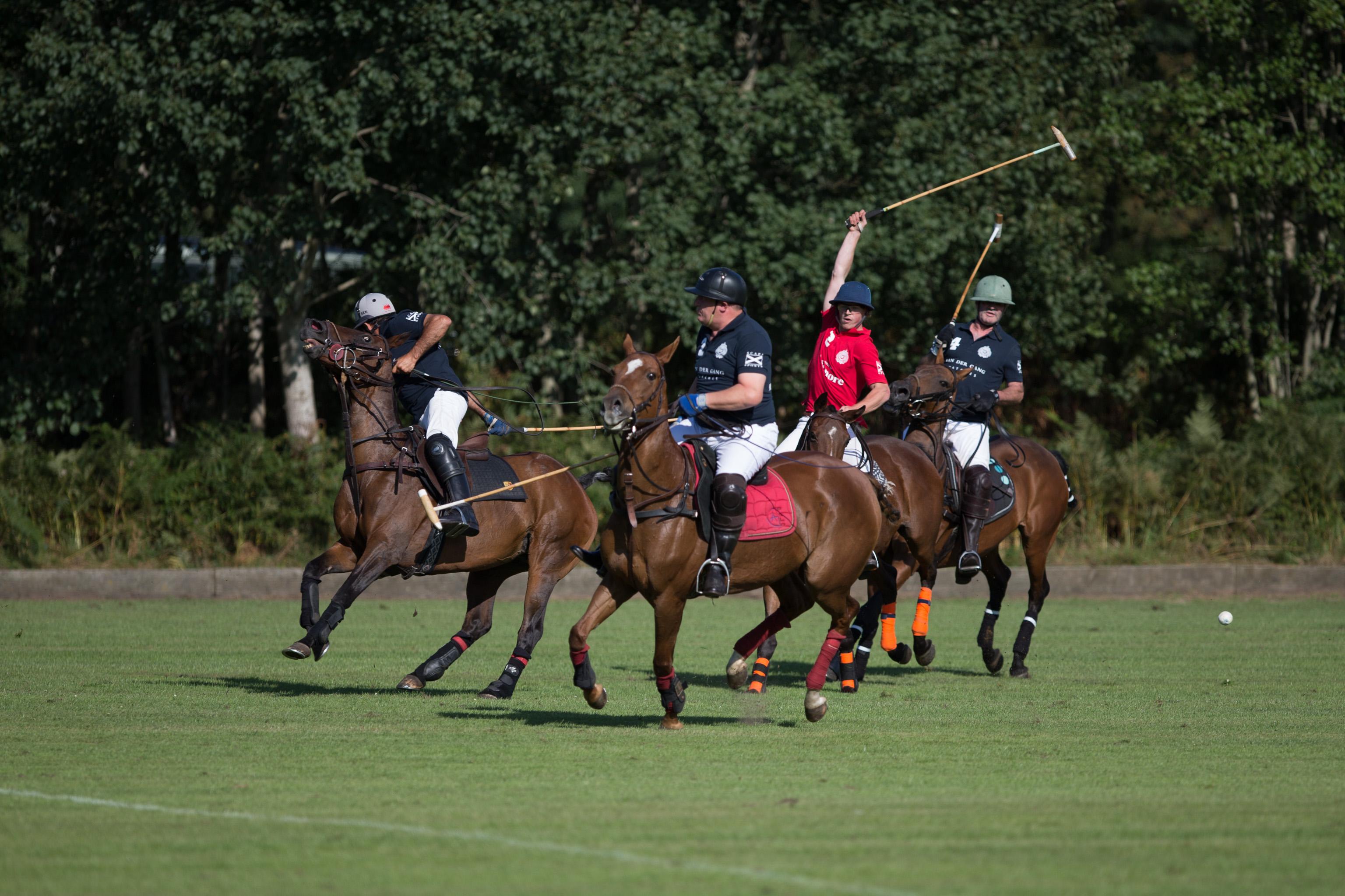 Polo is een actiesport vol adrenaline
