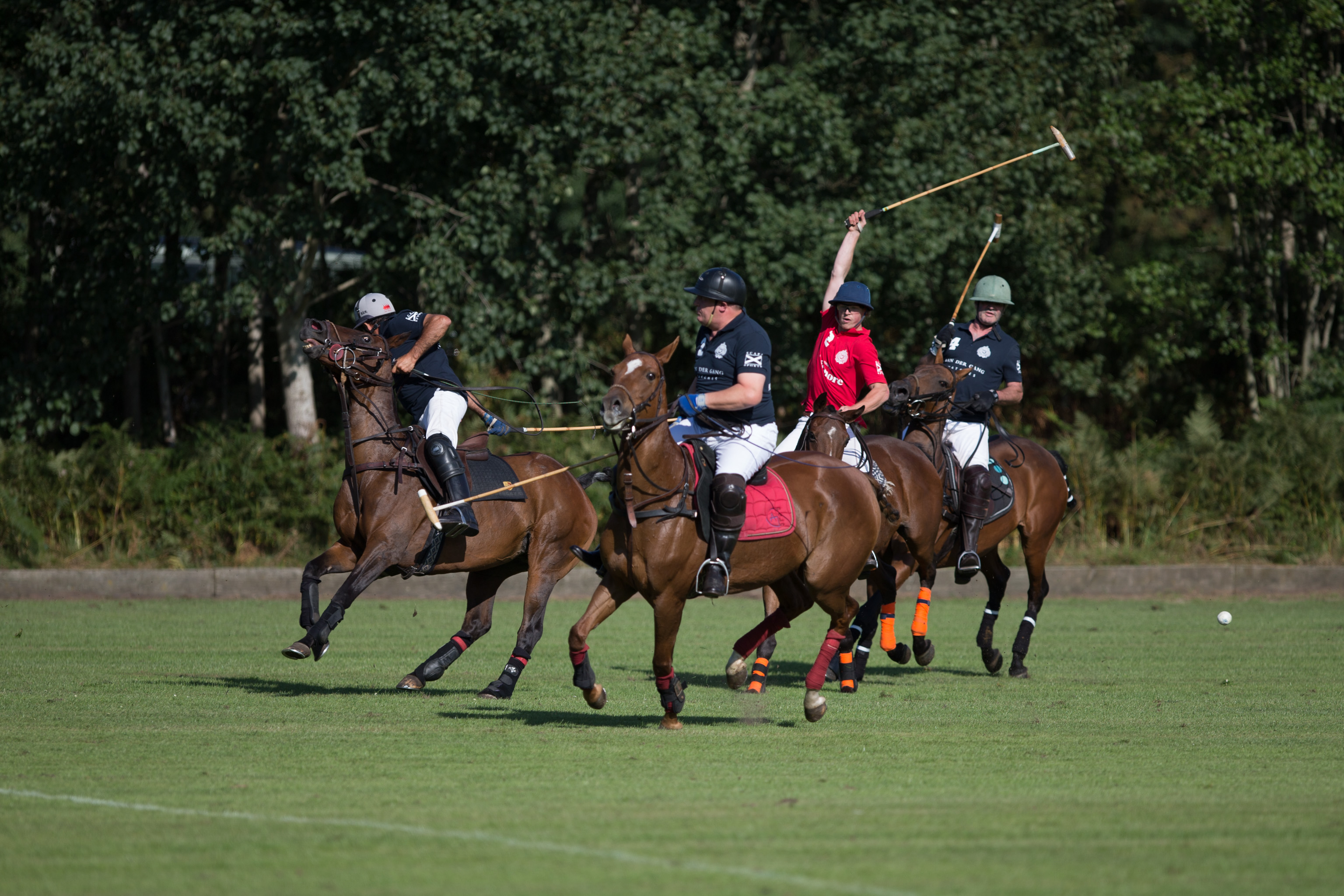 Polo is een actiesport vol adrenaline