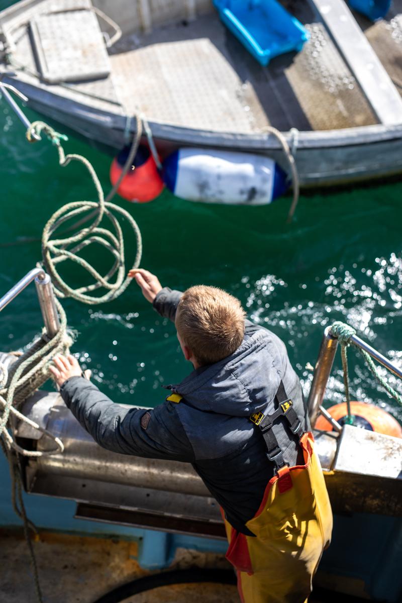 De Diver Net in een visnet